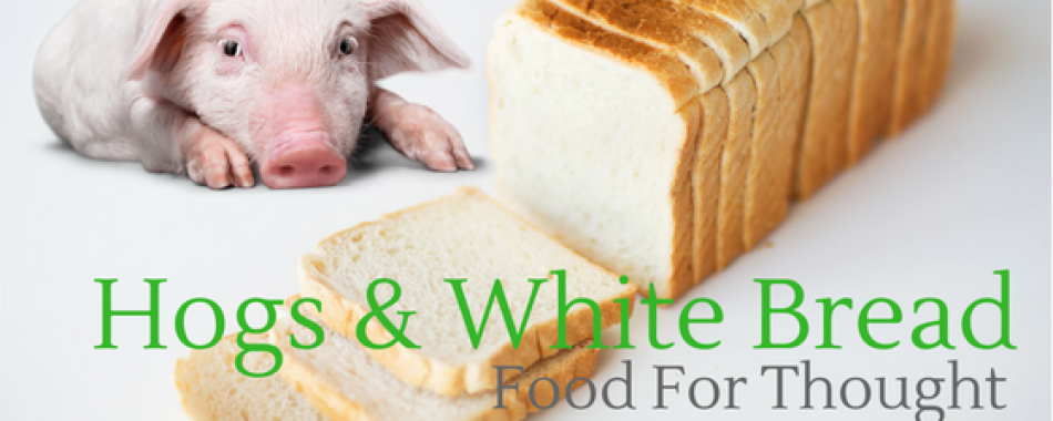 HOGS & WHITE BREAD