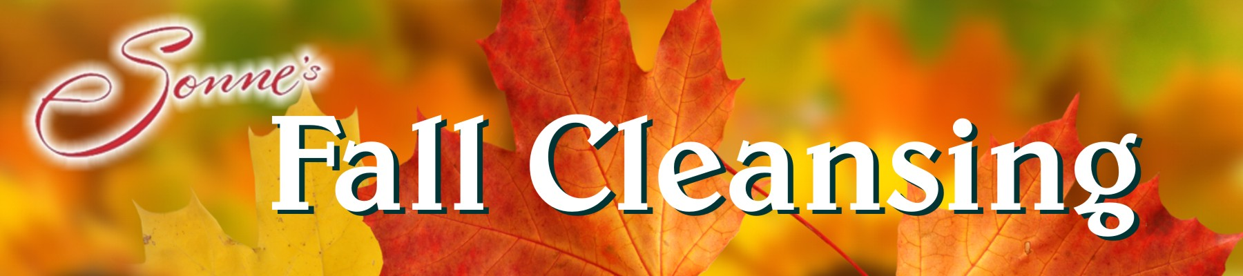 Sonnes Fall Cleansing Banner